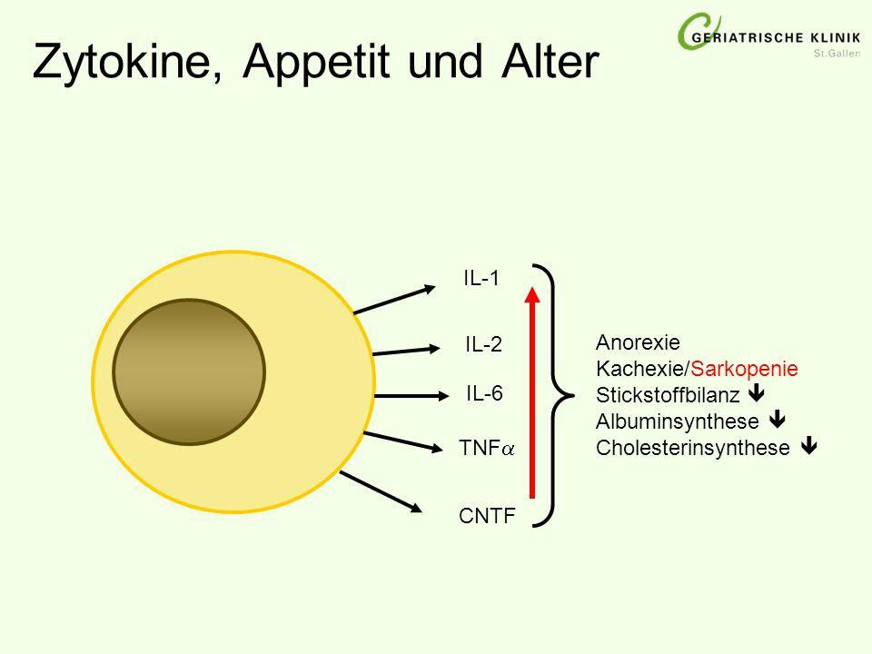 Zytokine, Appetit und Alter IL-1 IL-2 IL-6 TNF  CNTF Anorexie Kachexie/Sarkopenie Stickstoffbilanz  Albuminsynthese  Cholesterinsynthese 