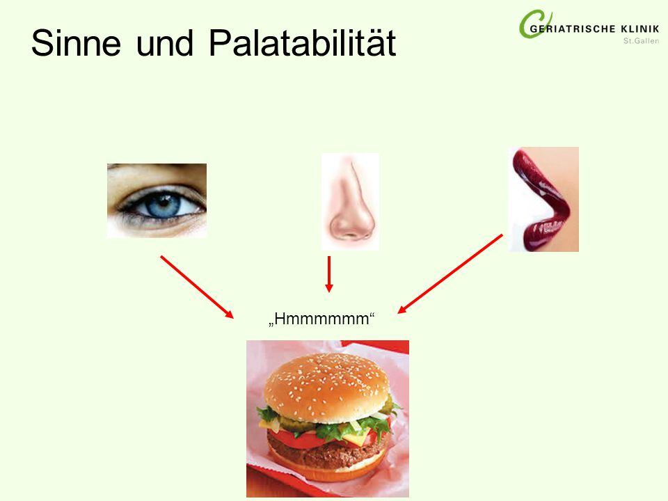 """Sinne und Palatabilität """"Hmmmmmm"""""""