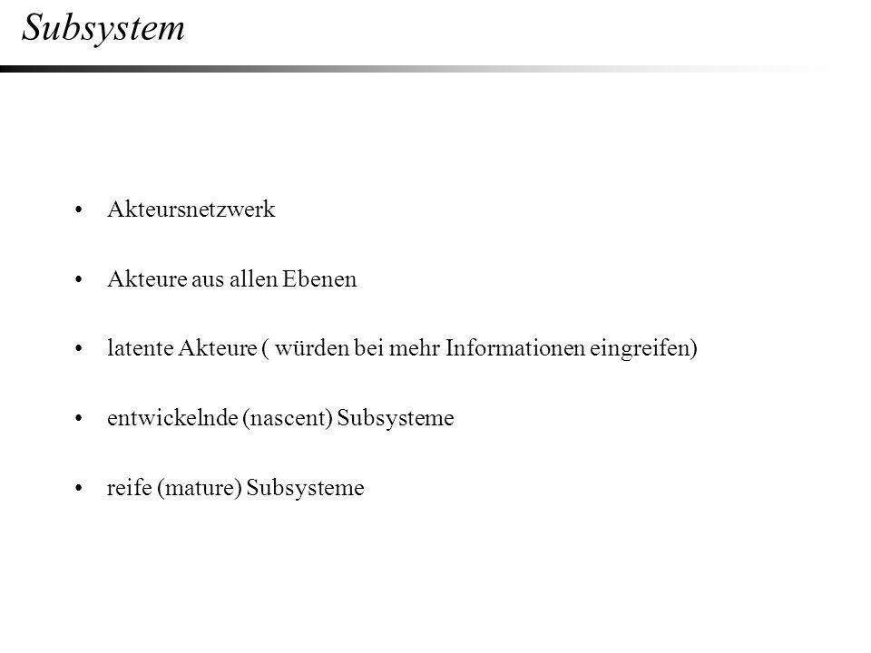 Subsystem Akteursnetzwerk Akteure aus allen Ebenen latente Akteure ( würden bei mehr Informationen eingreifen) entwickelnde (nascent) Subsysteme reife