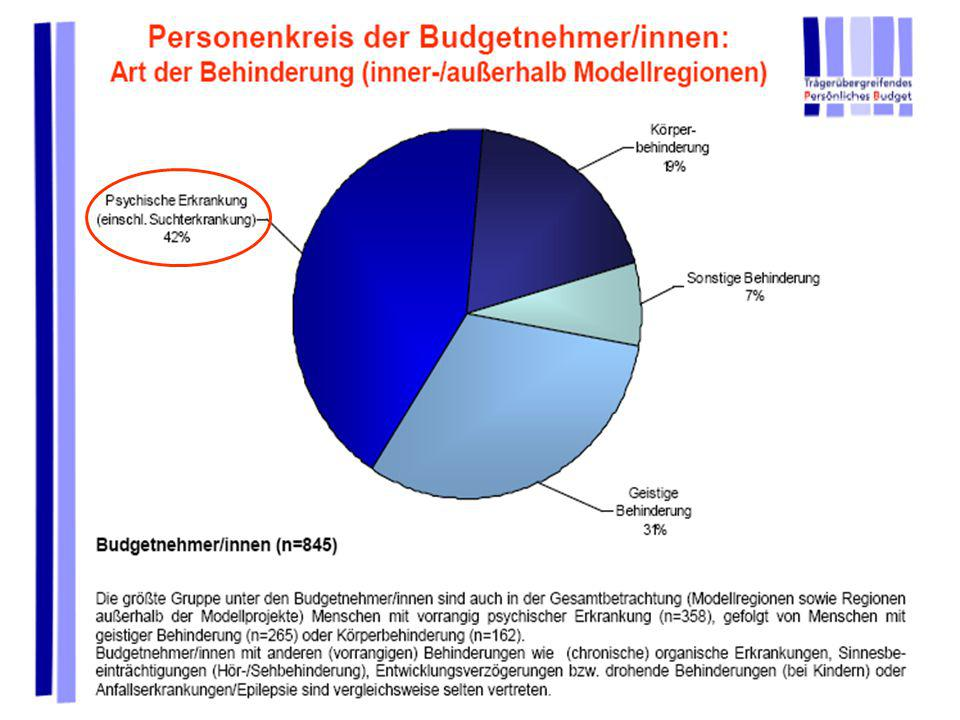 Persönliches Budget für seelisch behinderte Menschen R. Peukert und AKTION PSYCHISCH KRANKE e.V. Bedarfsfeststellungsverfahren