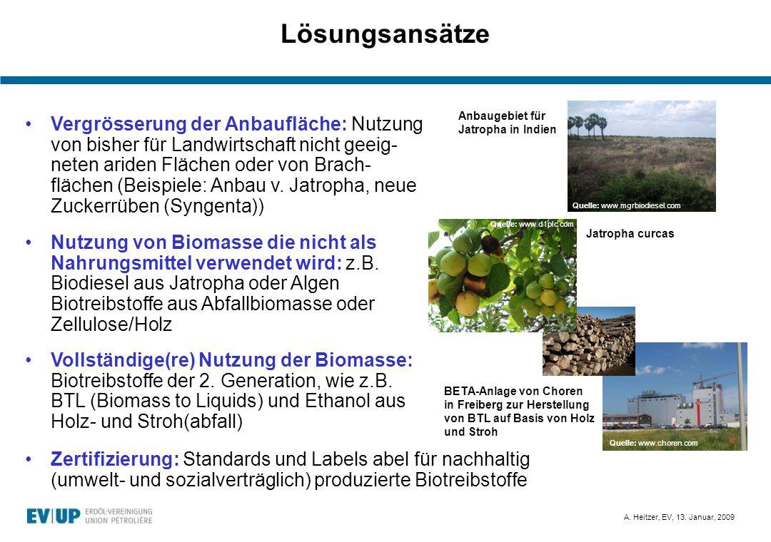 A. Heitzer, EV, 13. Januar, 2009 Lösungsansätze Zertifizierung: Standards und Labels abel für nachhaltig (umwelt- und sozialverträglich) produzierte B
