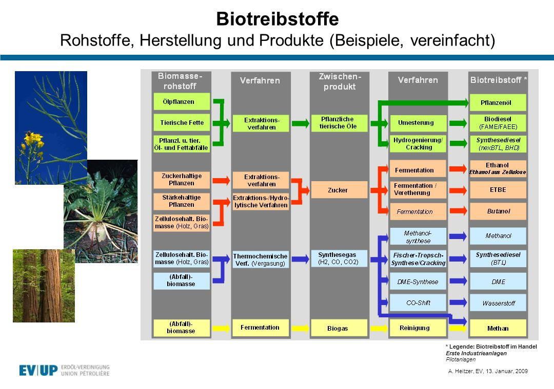 A. Heitzer, EV, 13. Januar, 2009 Biotreibstoffe Rohstoffe, Herstellung und Produkte (Beispiele, vereinfacht) * Legende: Biotreibstoff im Handel Erste