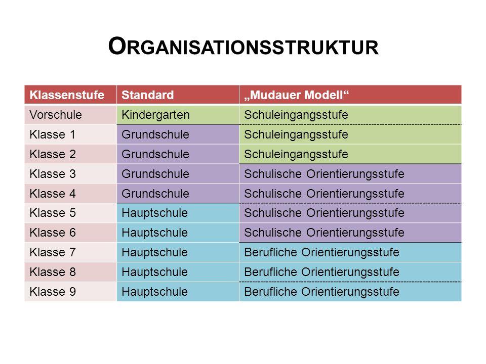 "O RGANISATIONSSTRUKTUR KlassenstufeStandard""Mudauer Modell"" VorschuleKindergartenSchuleingangsstufe Klasse 1GrundschuleSchuleingangsstufe Klasse 2Grun"