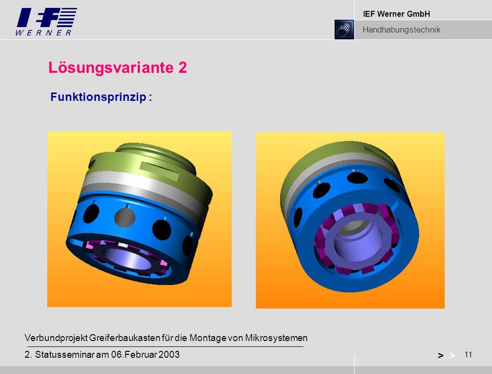 IEF Werner GmbH Handhabungstechnik 11 > Verbundprojekt Greiferbaukasten für die Montage von Mikrosystemen 2.