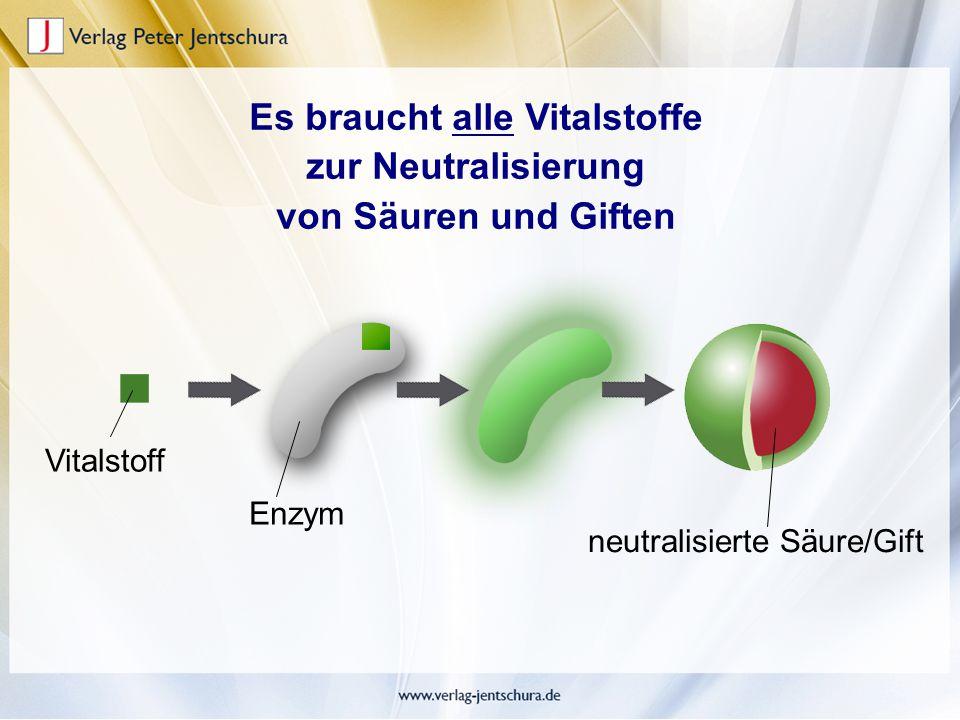 Es braucht alle Vitalstoffe zur Neutralisierung von Säuren und Giften Vitalstoff Enzym neutralisierte Säure/Gift
