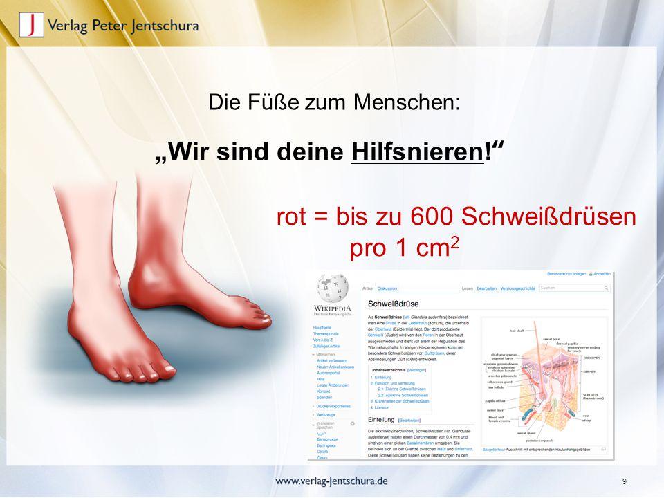 """9 """"Wir sind deine Hilfsnieren!"""" Die Füße zum Menschen: rot = bis zu 600 Schweißdrüsen pro 1 cm 2"""