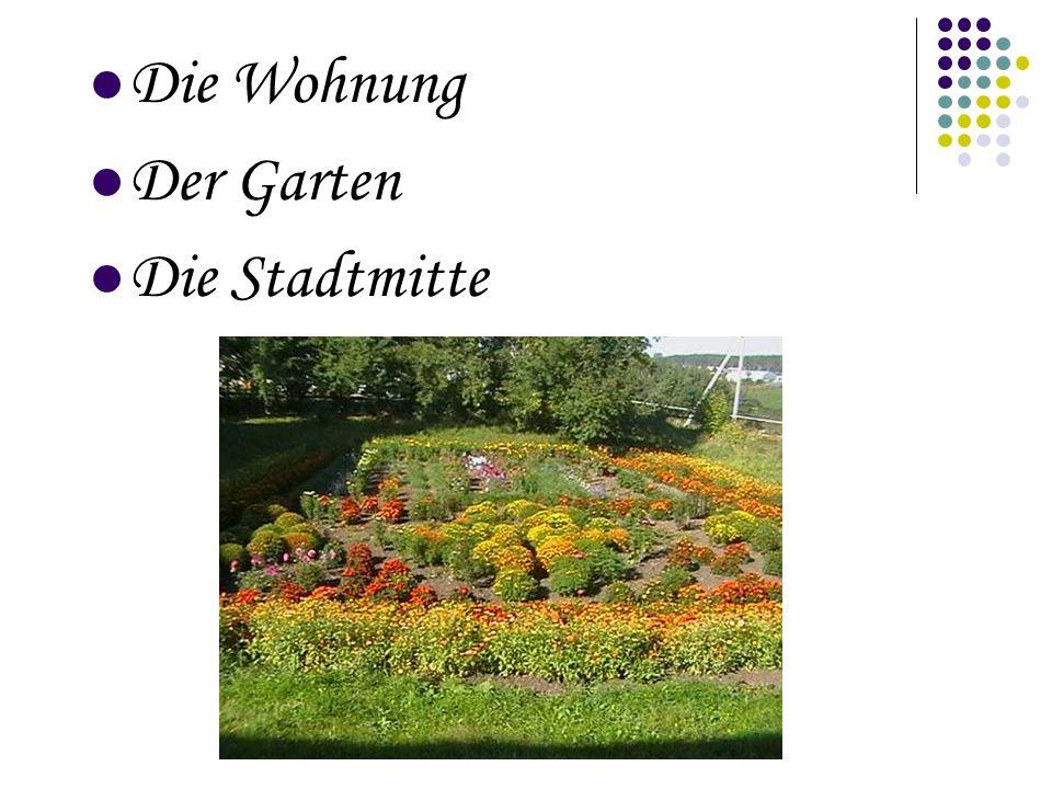 Die Wohnung Der Garten Die Stadtmitte