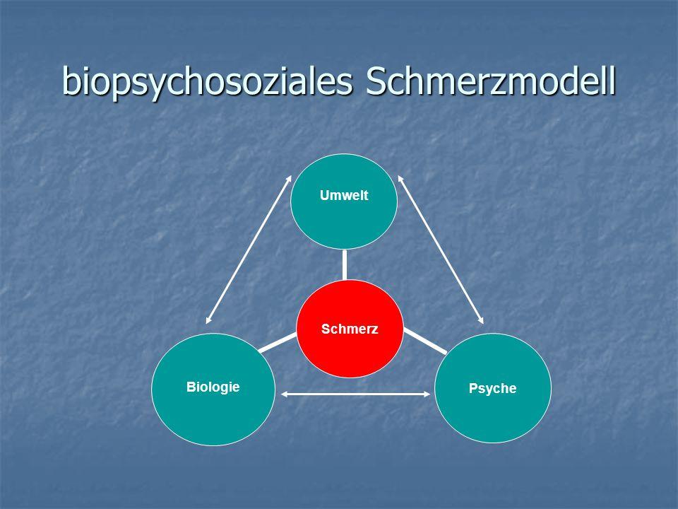 biopsychosoziales Schmerzmodell Schmerz Umwelt Psyche Biologie