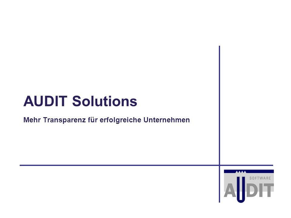 AUDIT Solutions Mehr Transparenz für erfolgreiche Unternehmen