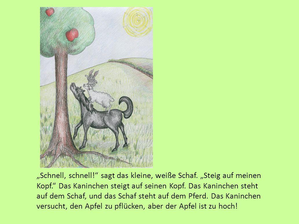 """Die zwei Freunde rennen zum Apfelbaum zurück. Das Kaninchen sieht den schönen, roten Apfel. """"Oh,"""" sagt das kleine, graue Kaninchen, """"das ist ein schön"""