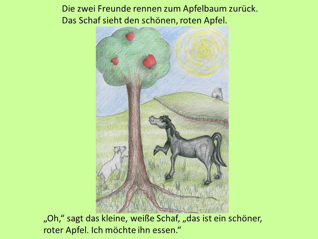 """""""Wer ist da?"""" sagt das kleine, weiße Schaf. """"Ich bin es, das kleine, schwarze Pferd. Komm bitte und hilf mir."""" """"Ja, ich komme sofort."""" Klopf! Klopf! K"""