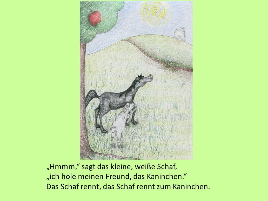 """""""Schnell, schnell!"""" sagt das kleine, schwarze Pferd. """"Steig auf meinen Rücken."""" Das Schaf steigt auf seinen Rücken. Es versucht, den Apfel zu pflücken"""