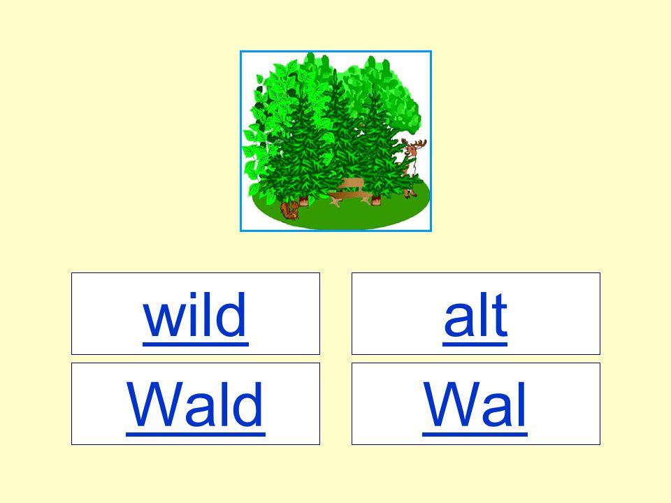 wild WalWald alt