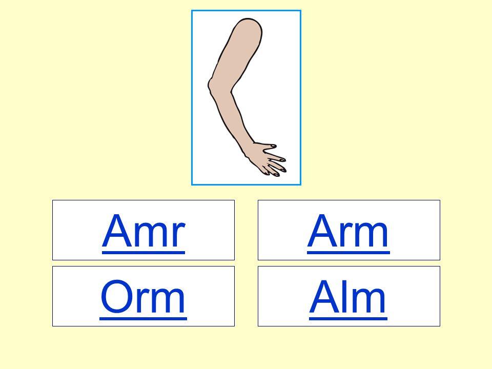 Amr AlmOrm Arm
