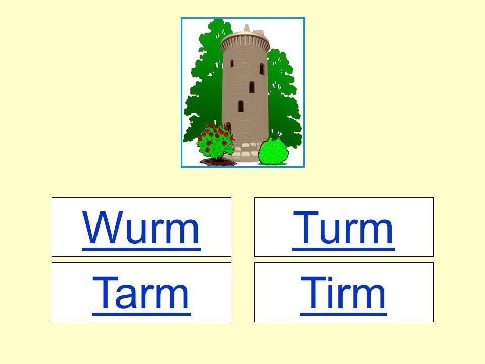 Wurm TirmTarm Turm