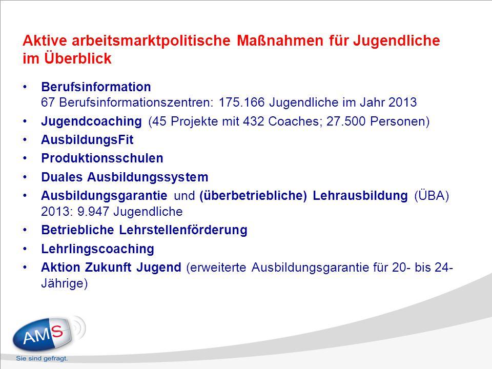 Aktive arbeitsmarktpolitische Maßnahmen für Jugendliche im Überblick Berufsinformation 67 Berufsinformationszentren: 175.166 Jugendliche im Jahr 2013