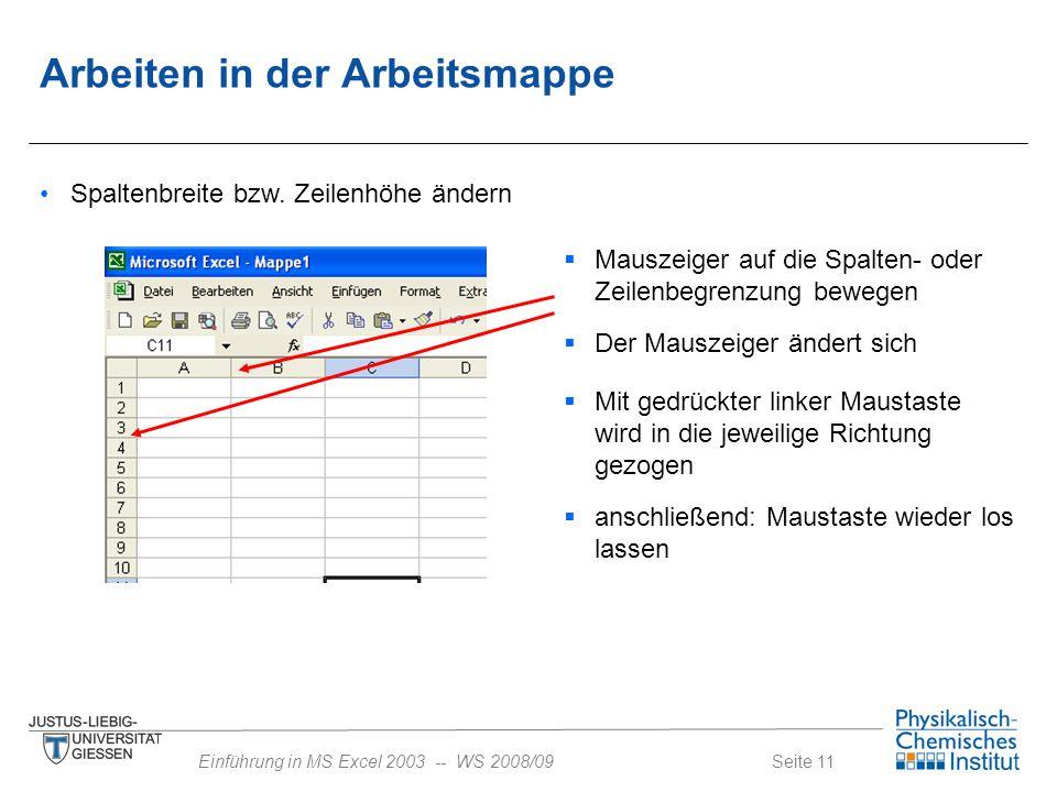 Seite 11Einführung in MS Excel 2003 -- WS 2008/09 Spaltenbreite bzw. Zeilenhöhe ändern  Mauszeiger auf die Spalten- oder Zeilenbegrenzung bewegen  D