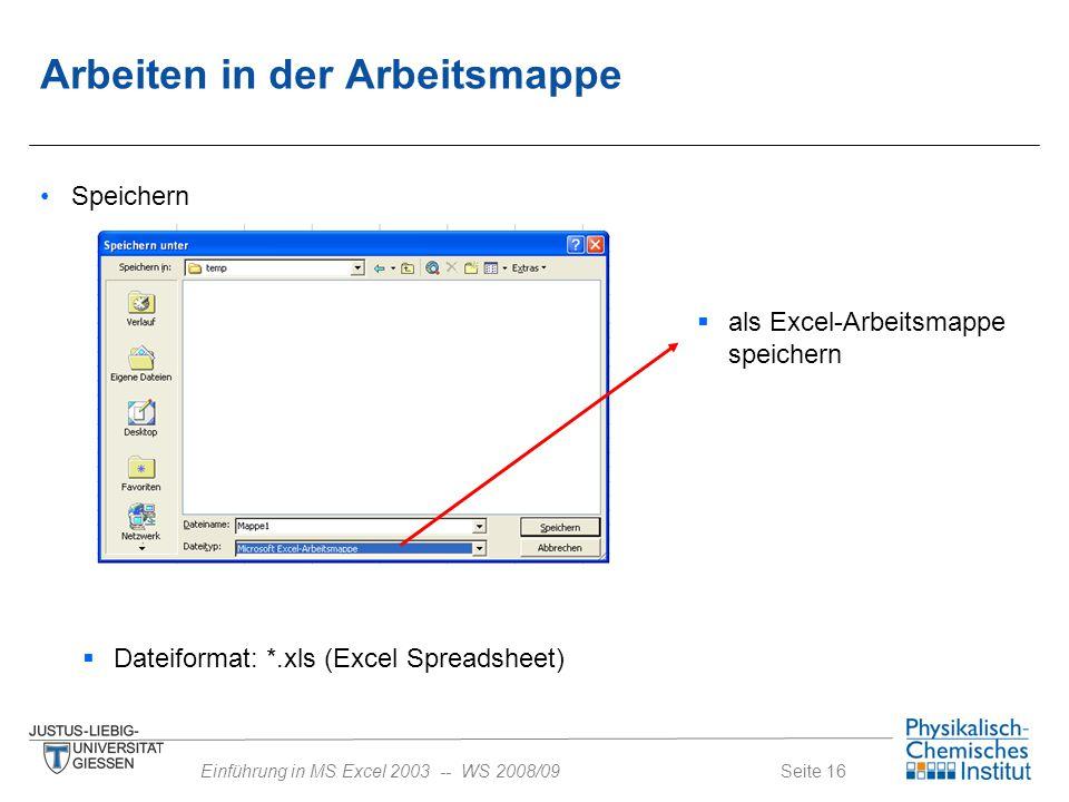 Seite 16Einführung in MS Excel 2003 -- WS 2008/09 Speichern  als Excel-Arbeitsmappe speichern Arbeiten in der Arbeitsmappe  Dateiformat: *.xls (Exce