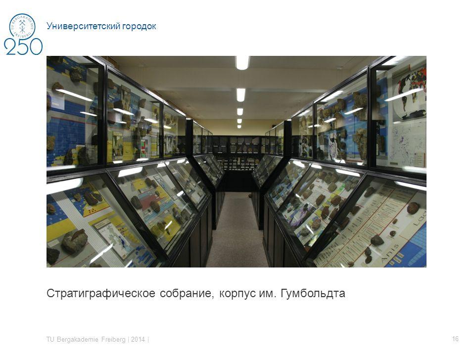 Стратиграфическое собрание, корпус им.