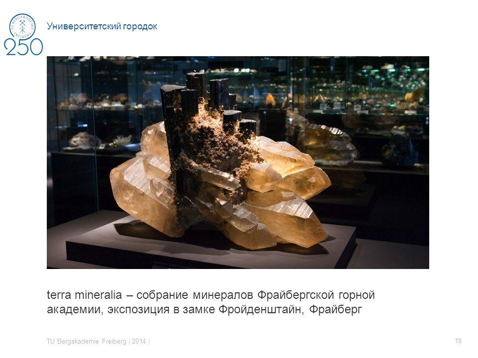 terra mineralia – собрание минералов Фрайбергской горной академии, экспозиция в замке Фройденштайн, Фрайберг TU Bergakademie Freiberg | 2014 | 18 Университетский городок
