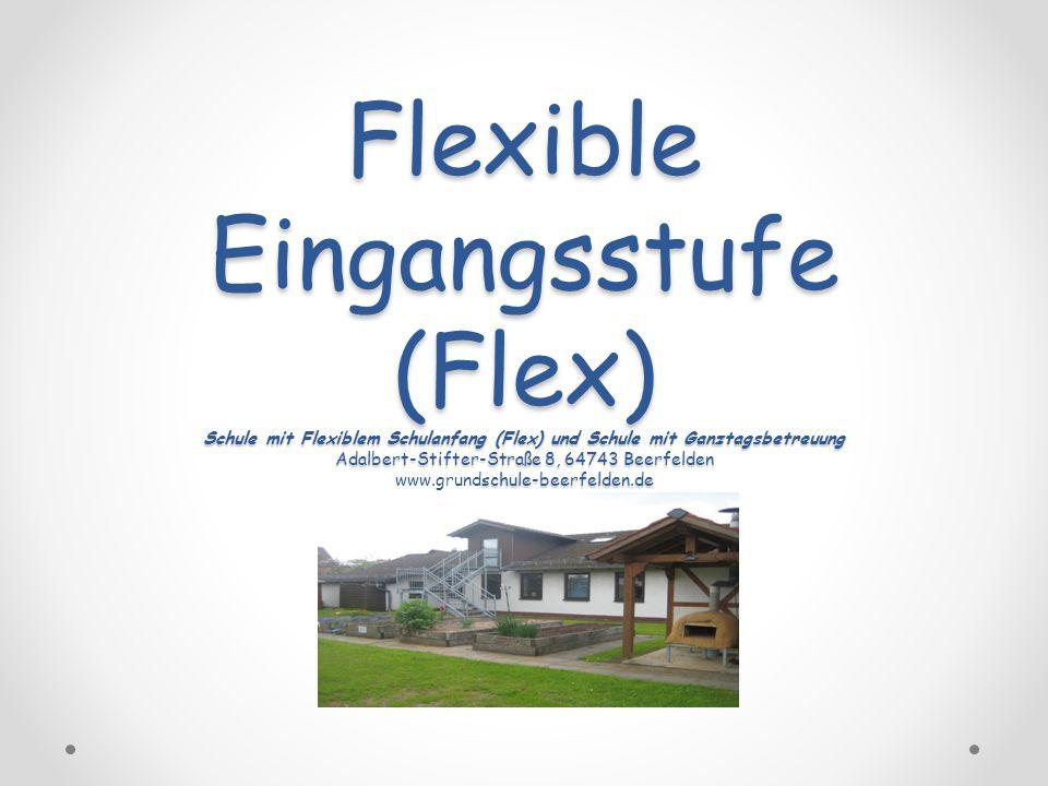 Inhalt 1.Einführung/Rahmenbedingungen 2.Praxisbedeutung 3.Umsetzung im täglichen Unterricht 4.Vorteile/Nachteile von Flex 5.Fazit 2