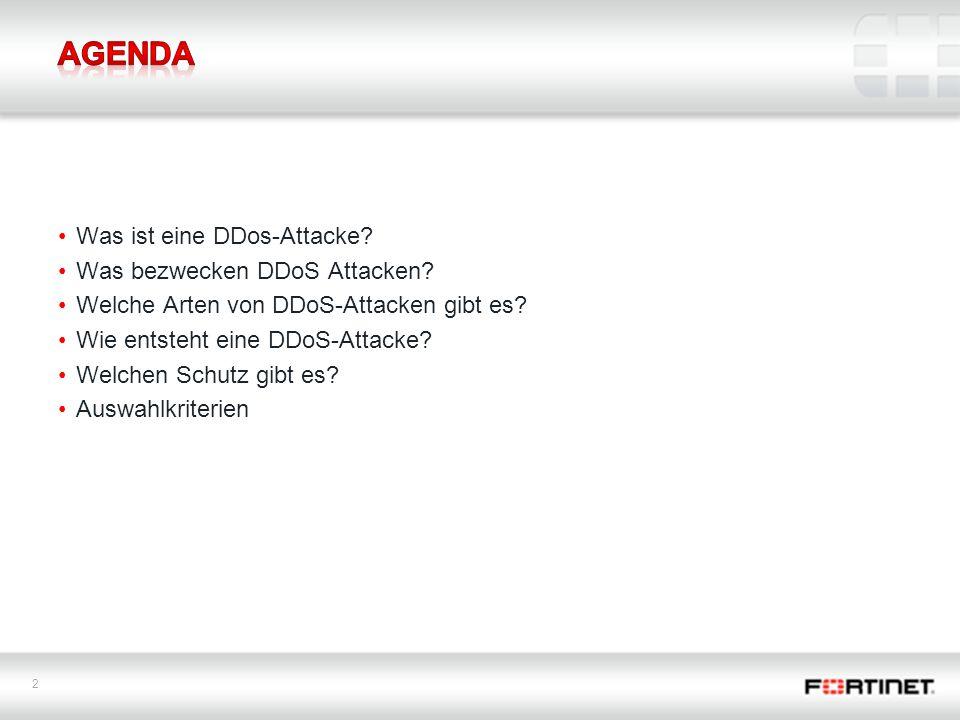 2 Was ist eine DDos-Attacke.Was bezwecken DDoS Attacken.