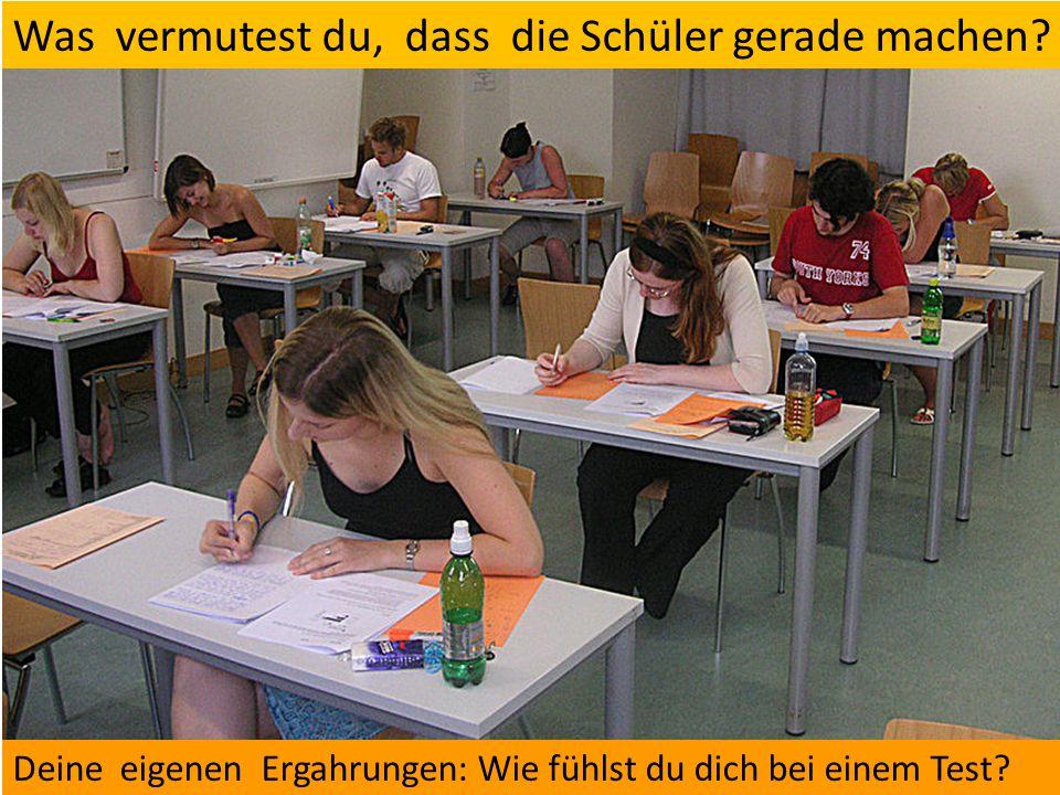 Was vermutest du, dass die Schüler gerade machen.