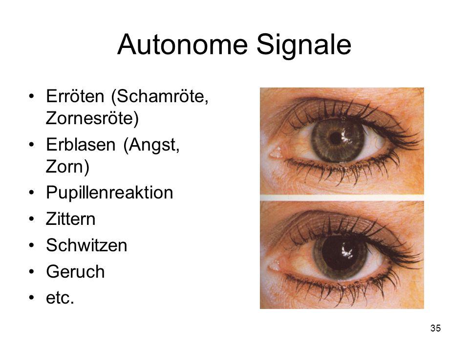 Autonome Signale Erröten (Schamröte, Zornesröte) Erblasen (Angst, Zorn) Pupillenreaktion Zittern Schwitzen Geruch etc. 35