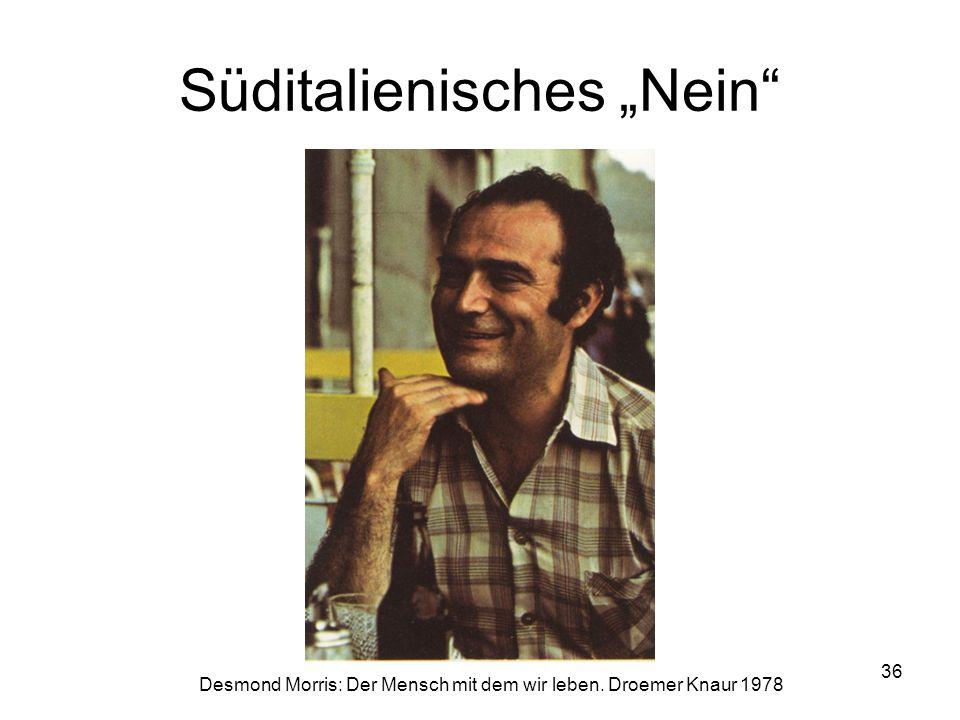 """Süditalienisches """"Nein"""" Desmond Morris: Der Mensch mit dem wir leben. Droemer Knaur 1978 36"""