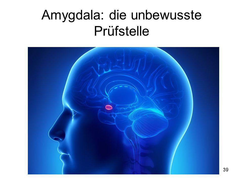 Amygdala: die unbewusste Prüfstelle 39