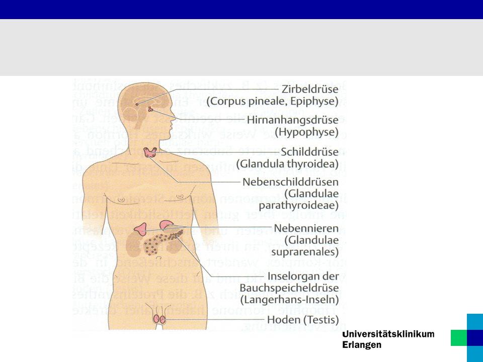 Pathophysiologie Jodmangel  Aktivierung von Wachstumsfaktoren  Hyperplasie (Zellvermehrung) T3/T4-Mangel  TSH-Erhöhung  Hypertrophie (Zellvergrößerung) Euthyreote Struma