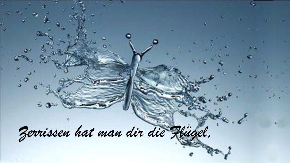 Text http://UteSchuster.mystorys.de http://UteSchuster.mystorys.de