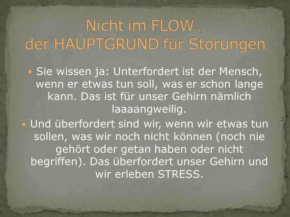 Der Idealzustand beim Lernen ist immer der FLOW-Zustand.