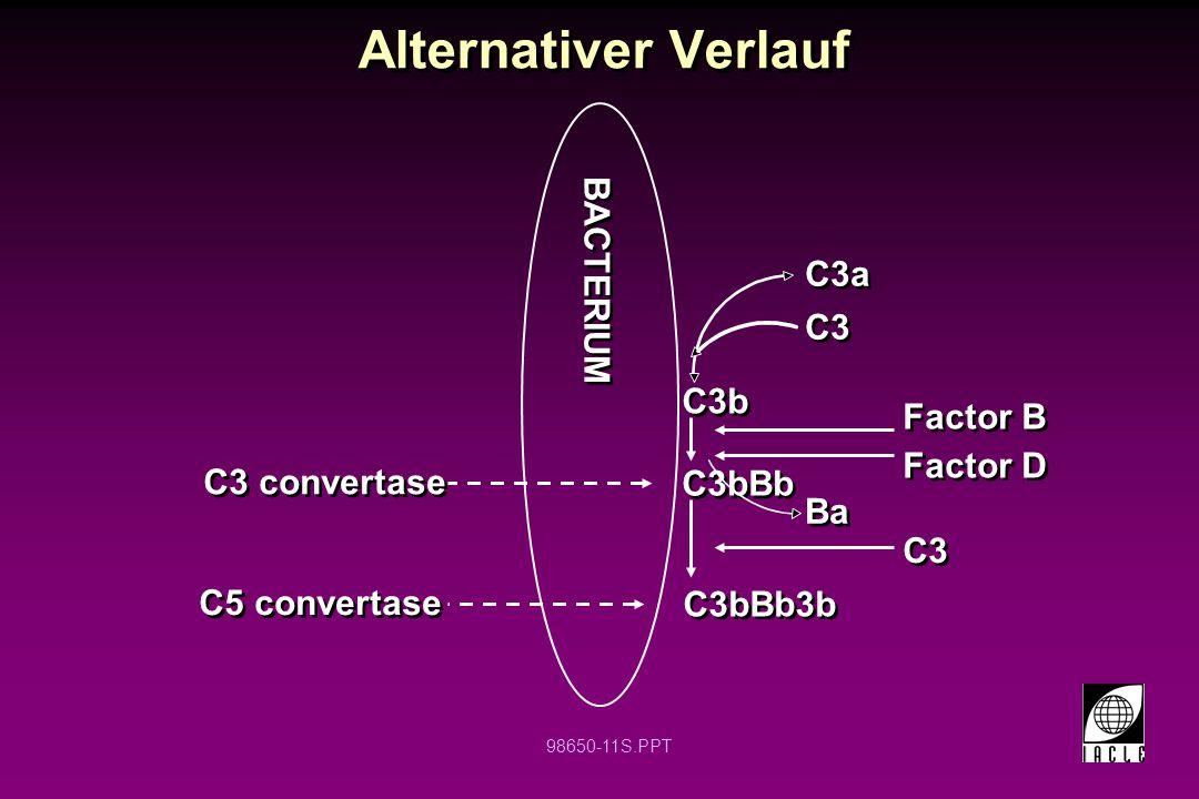 98650-11S.PPT Alternativer Verlauf C3 convertase C5 convertase BACTERIUM C3bBb C3bBb3b C3b Factor B Factor D C3 C3a Ba C3
