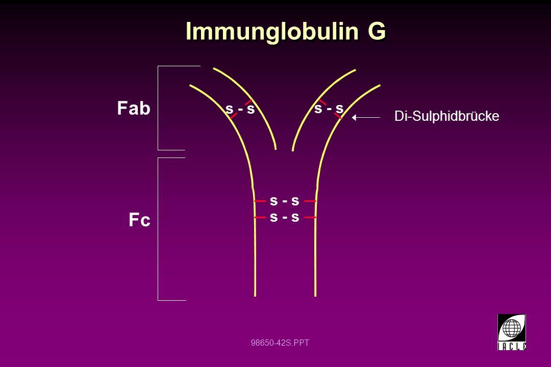 98650-42S.PPT Immunglobulin G Fab Fc s - s Di-Sulphidbrücke