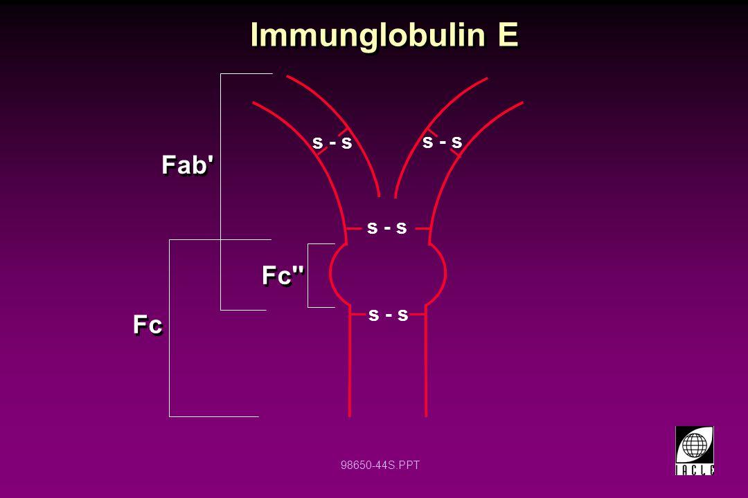 98650-44S.PPT Immunglobulin E Fab' Fc s - s Fc'' s - s