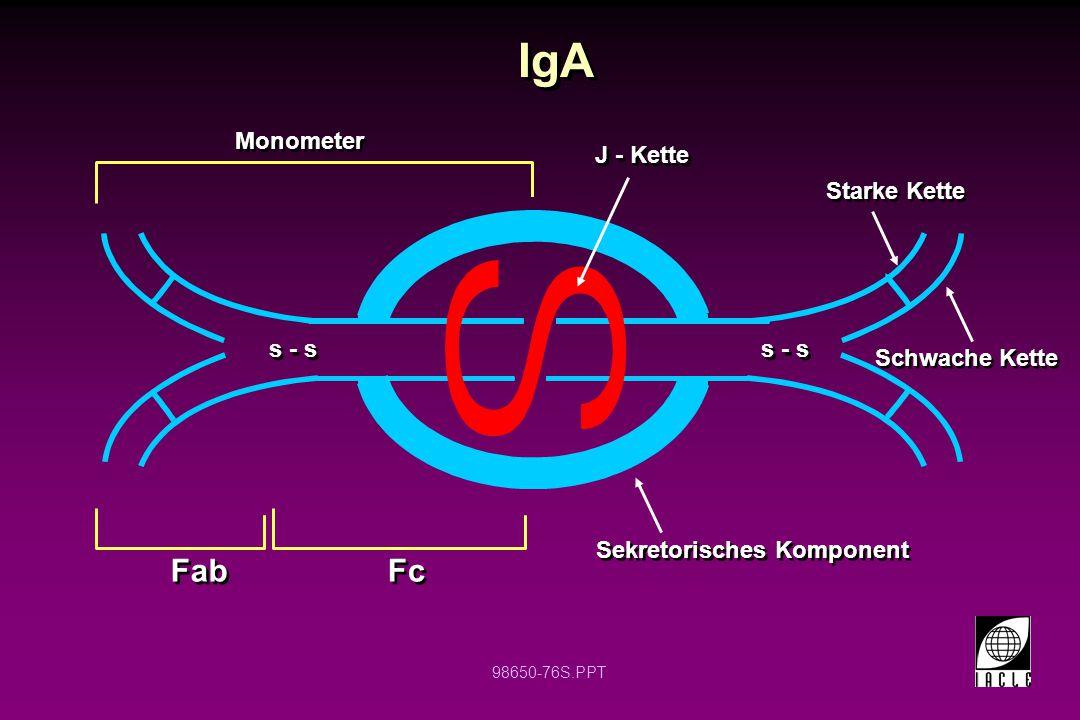 98650-76S.PPT IgA J - Kette Fab Sekretorisches Komponent Fc Schwache Kette Starke Kette Monometer s - s
