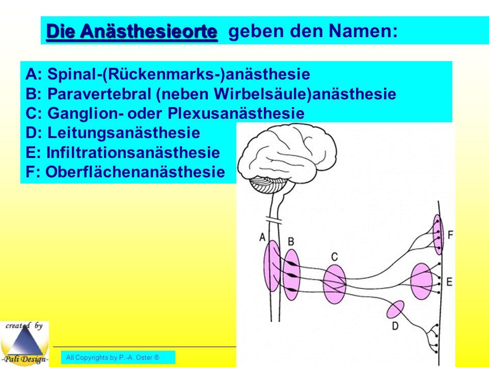 All Copyrights by P.-A. Oster ® Die Anästhesieorte Die Anästhesieorte geben den Namen: A: Spinal-(Rückenmarks-)anästhesie B: Paravertebral (neben Wirb