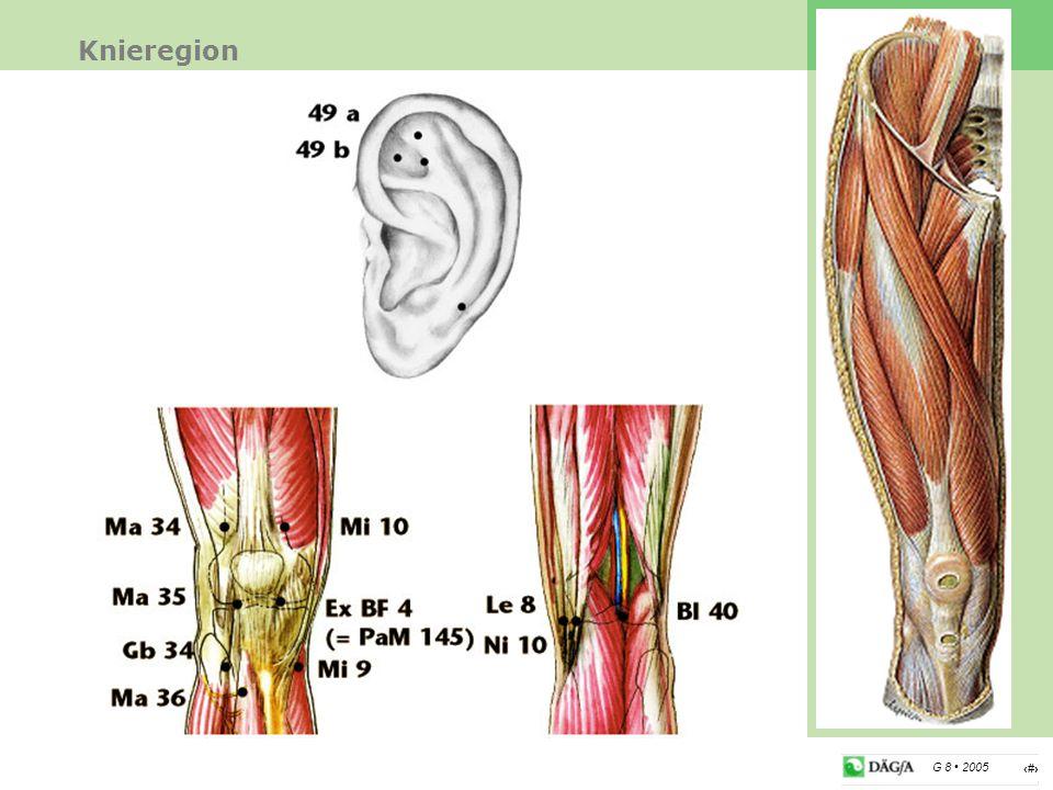 18 G 8 2005 Knieregion Therapie Das Knie hat eine energetische Schlüsselposition