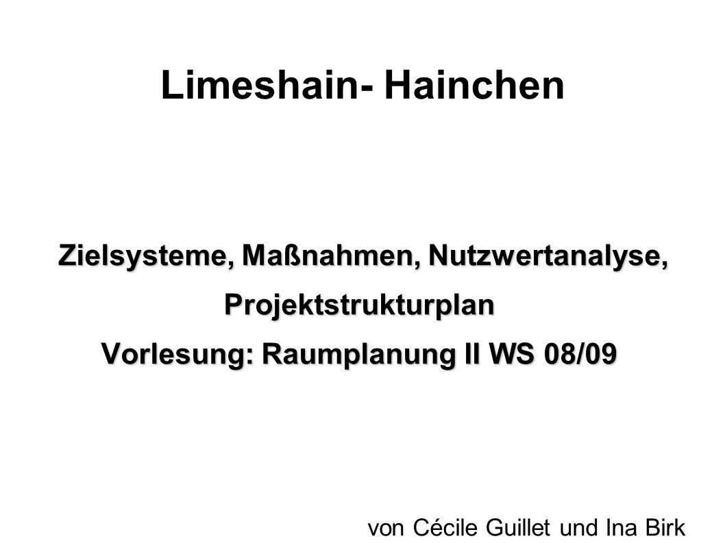 Limeshain- Hainchen Zielsysteme, Maßnahmen, Nutzwertanalyse, Projektstrukturplan Zielsysteme, Maßnahmen, Nutzwertanalyse, Projektstrukturplan Vorlesun