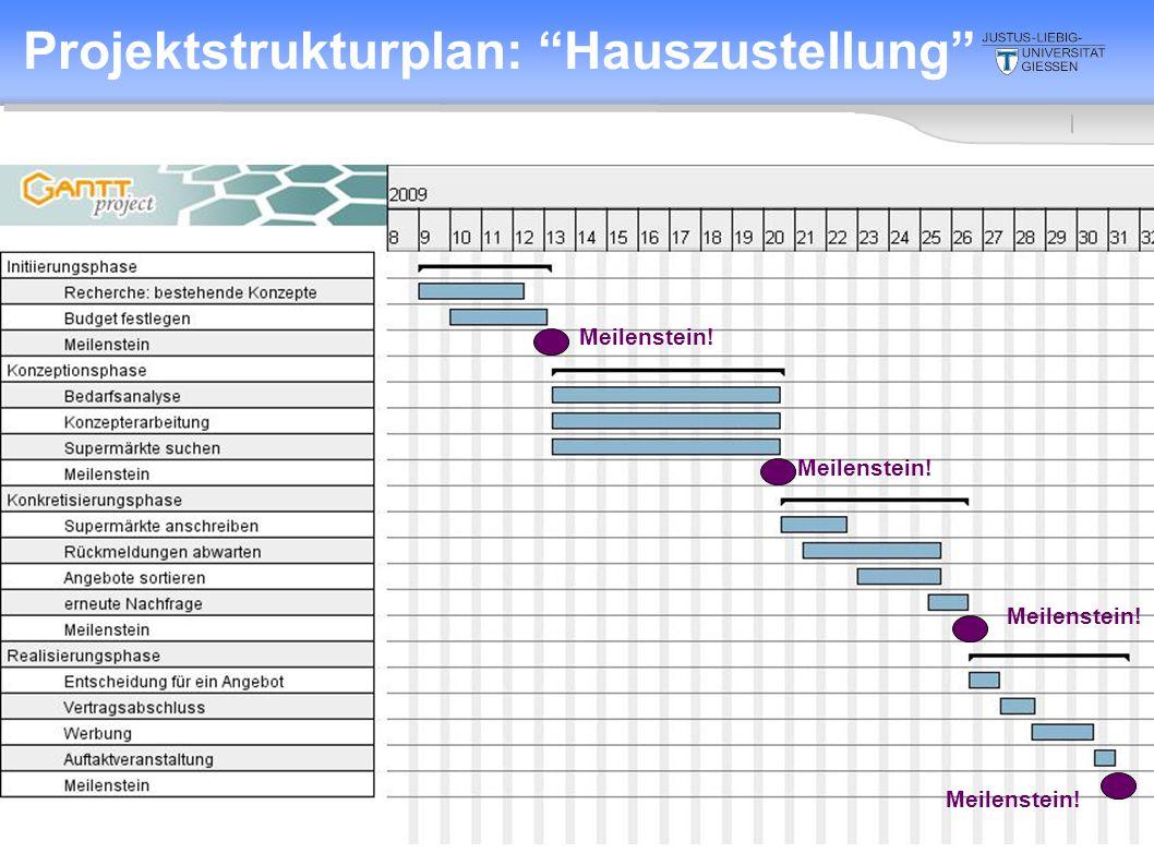 2. Sitzung 10.4.2008 Projektstrukturplan: Hauszustellung Meilenstein! Meilenstein!