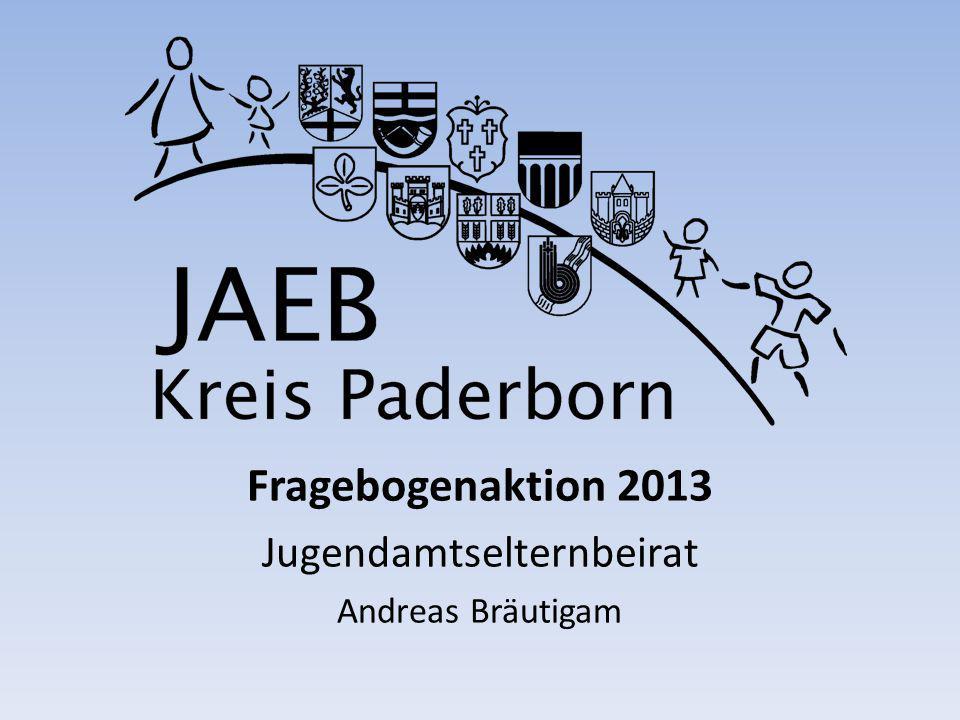 Fragebogenaktion 2013 Jugendamtselternbeirat Andreas Bräutigam