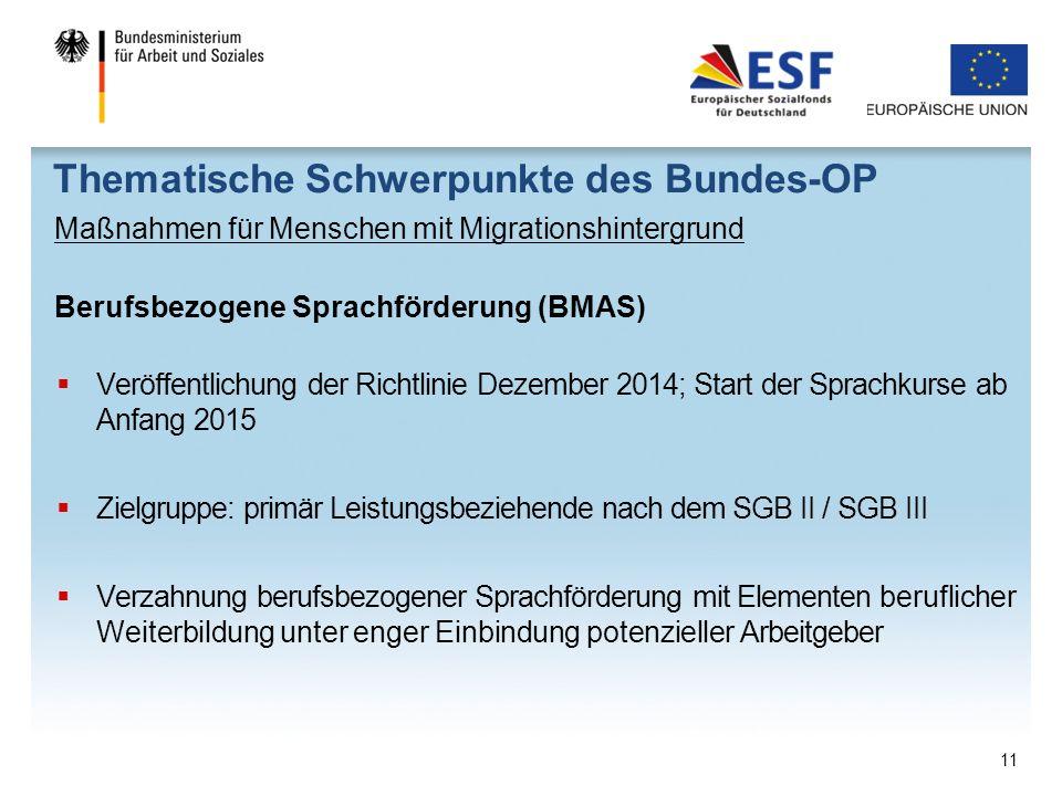 Thematische Schwerpunkte des Bundes-OP Maßnahmen für Menschen mit Migrationshintergrund Berufsbezogene Sprachförderung (BMAS)  Veröffentlichung der R