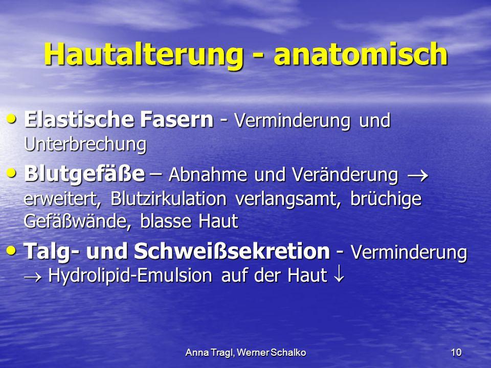 Anna Tragl, Werner Schalko10 Hautalterung - anatomisch Elastische Fasern - Verminderung und Unterbrechung Elastische Fasern - Verminderung und Unterbr