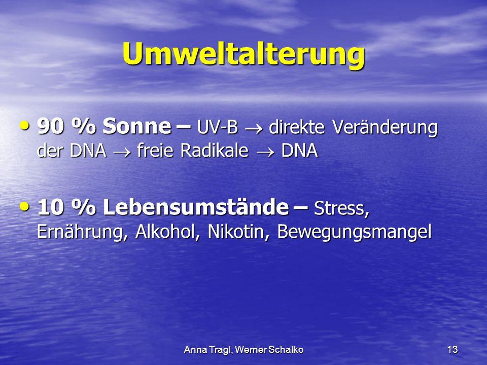 Anna Tragl, Werner Schalko13 Umweltalterung 90 % Sonne – UV-B  direkte Veränderung der DNA  freie Radikale  DNA 90 % Sonne – UV-B  direkte Verände