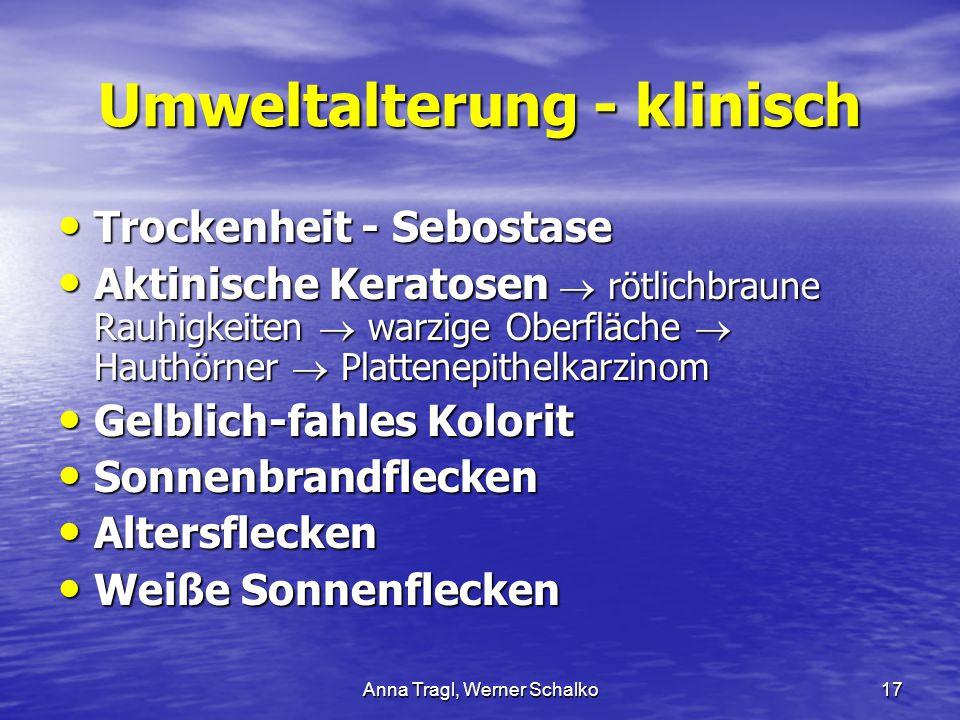 Anna Tragl, Werner Schalko17 Umweltalterung - klinisch Trockenheit - Sebostase Trockenheit - Sebostase Aktinische Keratosen  rötlichbraune Rauhigkeit