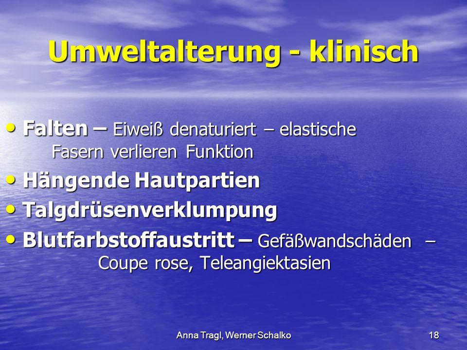 Anna Tragl, Werner Schalko18 Umweltalterung - klinisch Falten – Eiweiß denaturiert – elastische Fasern verlieren Funktion Falten – Eiweiß denaturiert