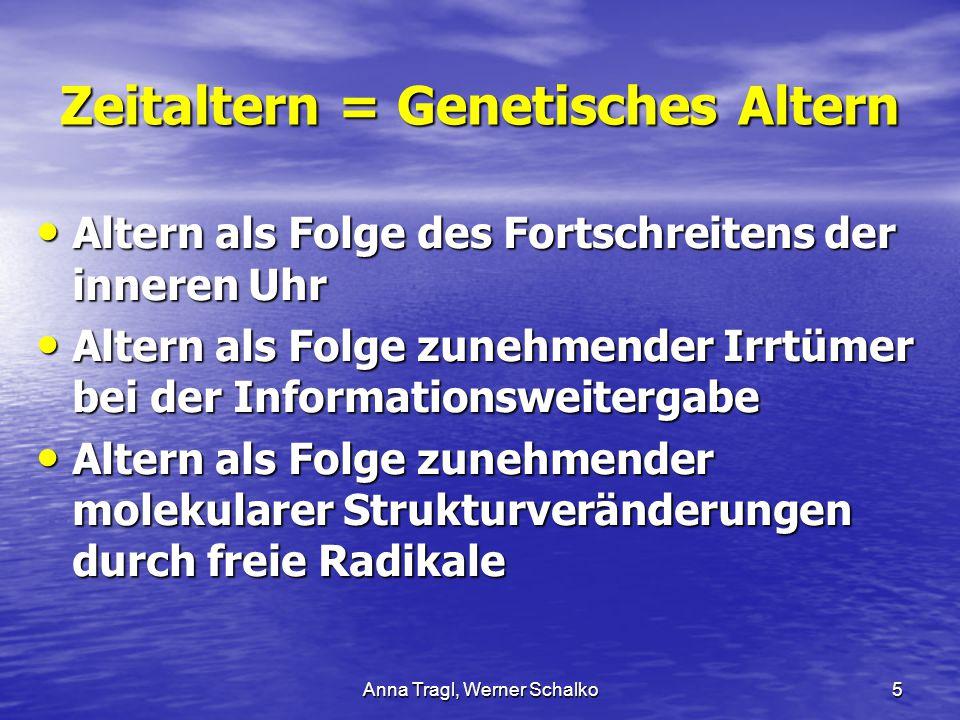 Anna Tragl, Werner Schalko5 Zeitaltern = Genetisches Altern Altern als Folge des Fortschreitens der inneren Uhr Altern als Folge des Fortschreitens de