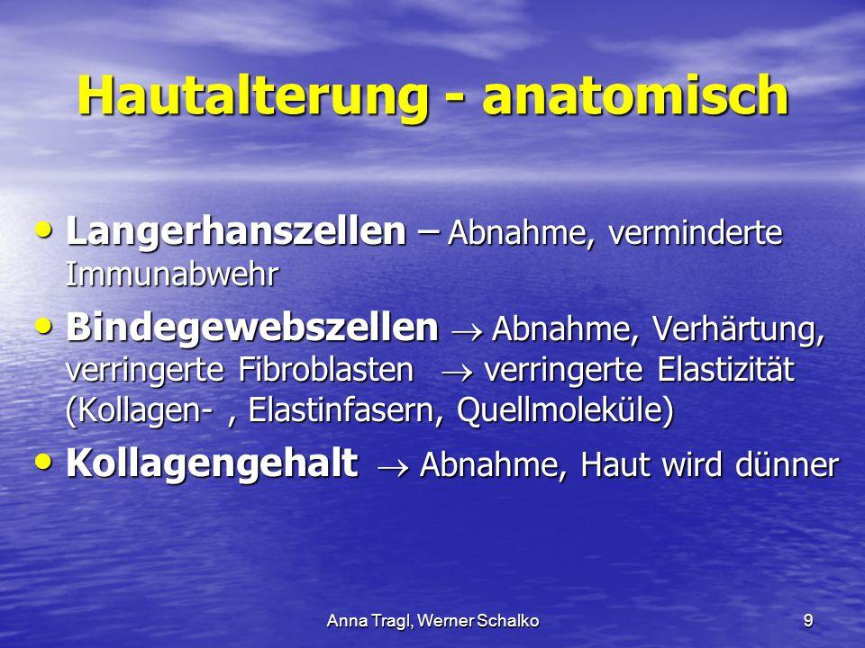 Anna Tragl, Werner Schalko9 Hautalterung - anatomisch Langerhanszellen – Abnahme, verminderte Immunabwehr Langerhanszellen – Abnahme, verminderte Immu