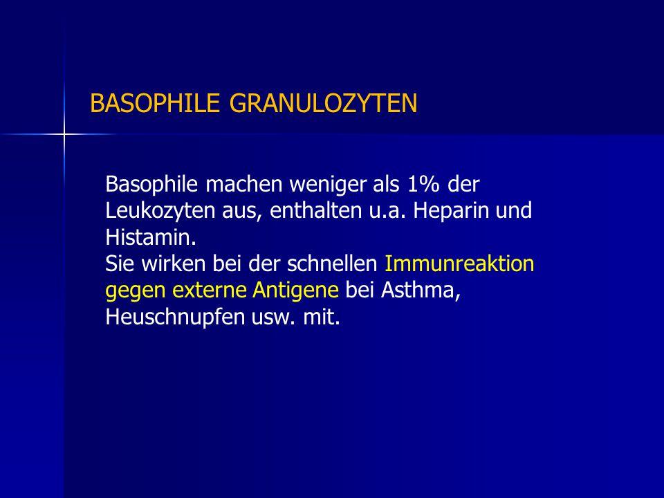 Basophile machen weniger als 1% der Leukozyten aus, enthalten u.a. Heparin und Histamin. Sie wirken bei der schnellen Immunreaktion gegen externe Anti